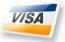Visa to buy repair order software